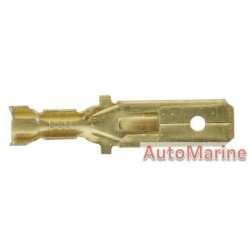 Brass Male Socket Terminal - 6.3mm - 100 Pieces
