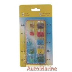 10 Piece Fuse Set (Mini + Standard)