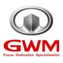 for GWM